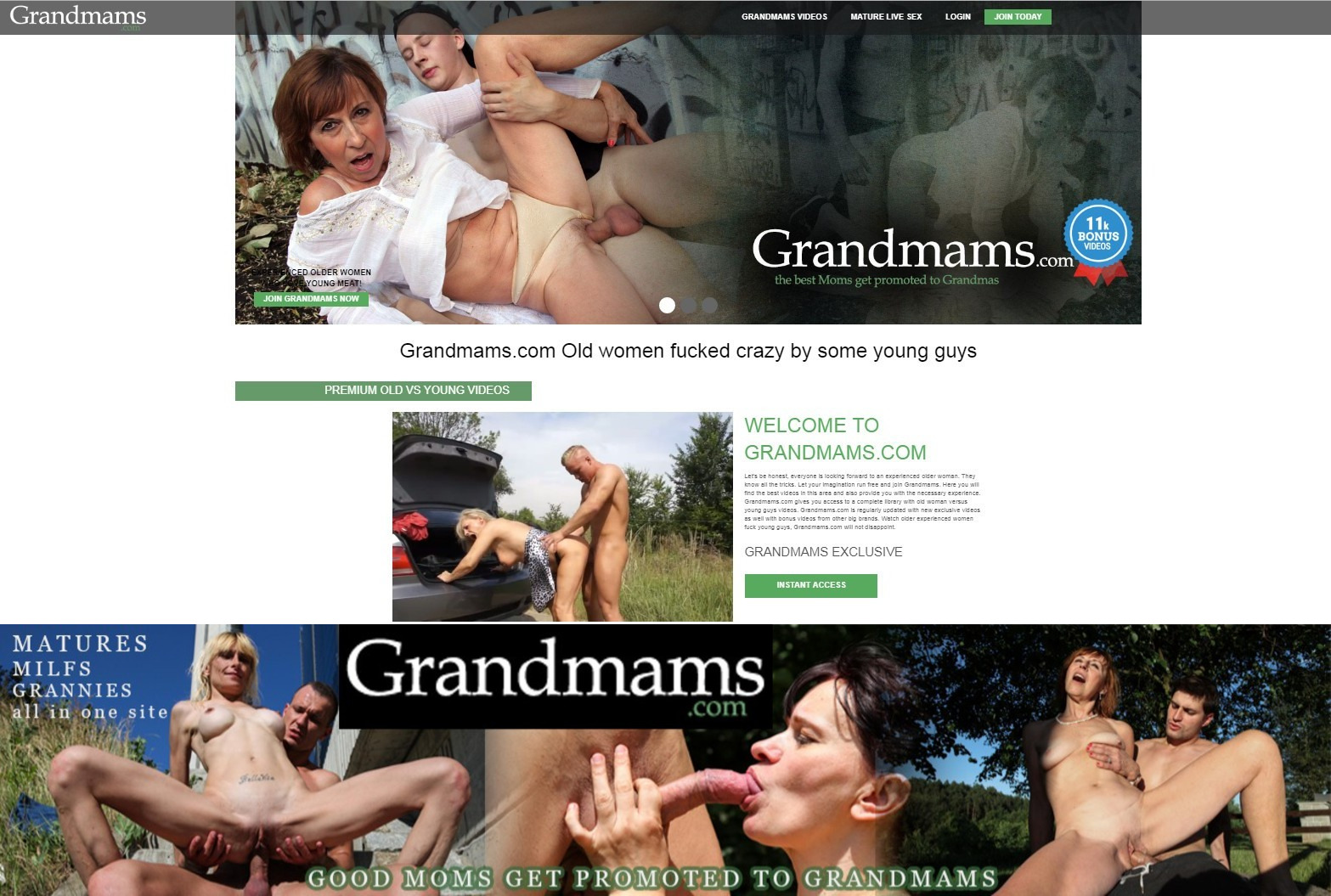 [GrandMams.com] SITERIP (41) [Granny, Mature, Old and Young]
