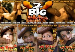 [2BigtoBeTrue.com] SITERIP (67) [2006-2011, Big Dick, Hardcore, Busty, Anal, Big Cock, Interracial]
